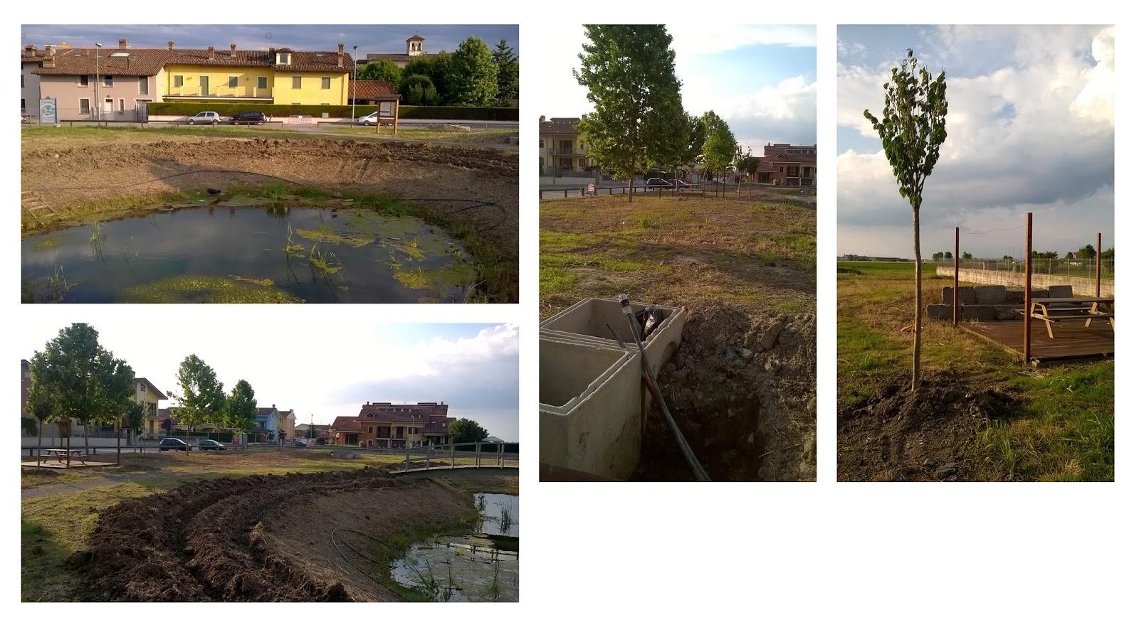 Parco e laghetto fine lavori genola liberamente for Pulizia laghetto