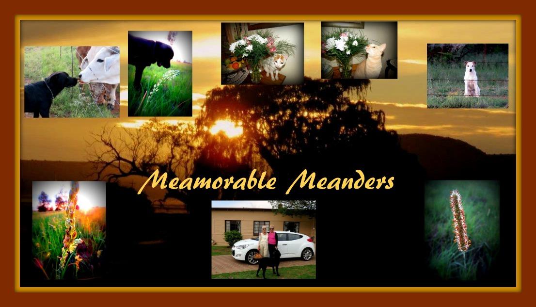 memorable meanders