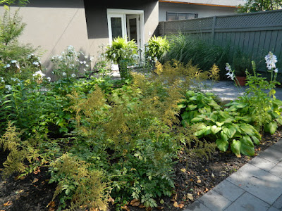 Danforth backyard Paul Jung Gardening Services by garden muses-not another Toronto gardening blog