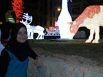 adiq bungsu (subiha)