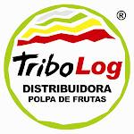 TRIBO LOG