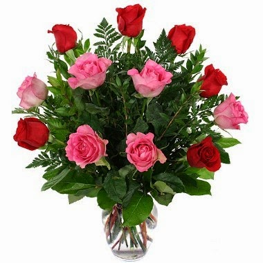 12 pink and red roses Vase included delivery in Ecuador