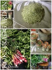 Odla din mat - från frö till tallrik