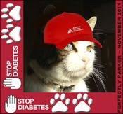 S.T.O.P.  Diabetes!