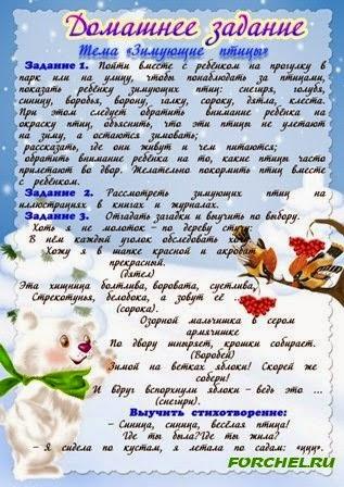 Картинки бабочки названия