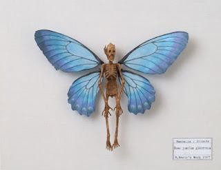 http://2.bp.blogspot.com/-7czKS2Dd6Ho/TudBi4D2T9I/AAAAAAAABmk/ocyIGpQlXP8/s320/Crypto+Dessicated+Fairy+Fantasy+Creature.jpg