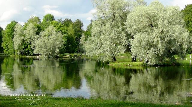 landscape park in Gatchina Пейзажный парк в Гатчине Блог Вся палитра впечатлений Palette of impression blog