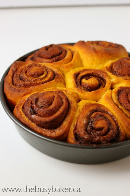 Pumpkin Spice Cinnamon Rolls - The Busy Baker