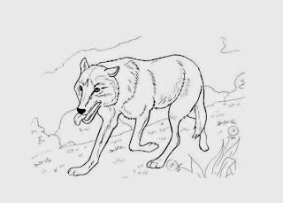 Baby Wolves Coloring Pages