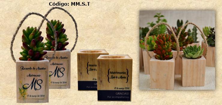 Souvenirs cactus maip marzo 2014 - Maceteros de madera baratos ...