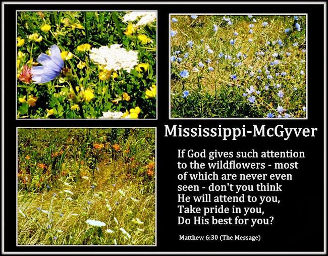 Mississippi McGyver