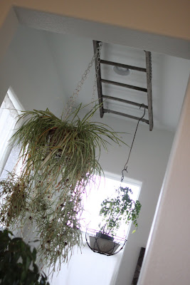 I Found This Old Ladder For A Couple Bucks At A Thrift Store. Using Plant  Hooks And Wire, I Attached It To The Ceiling Over My Bathtub.
