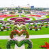 World's most beautiful floral garden? Dubai Miracle Garden
