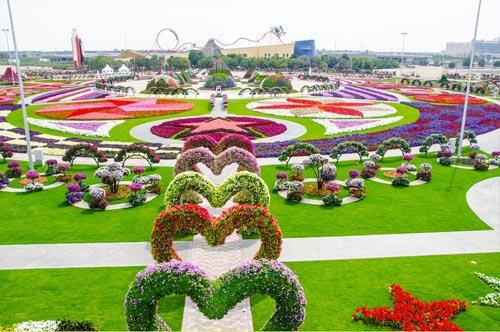 World's most beautiful floral garden? Dubai Miracle Garden