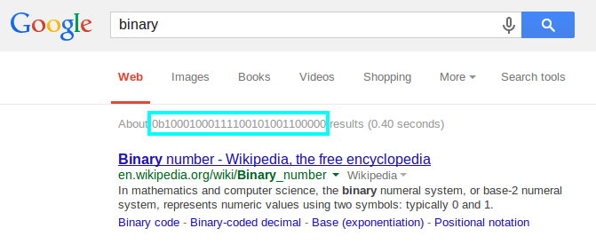 Google Search - binary