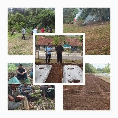 Pembinaan Pertanian