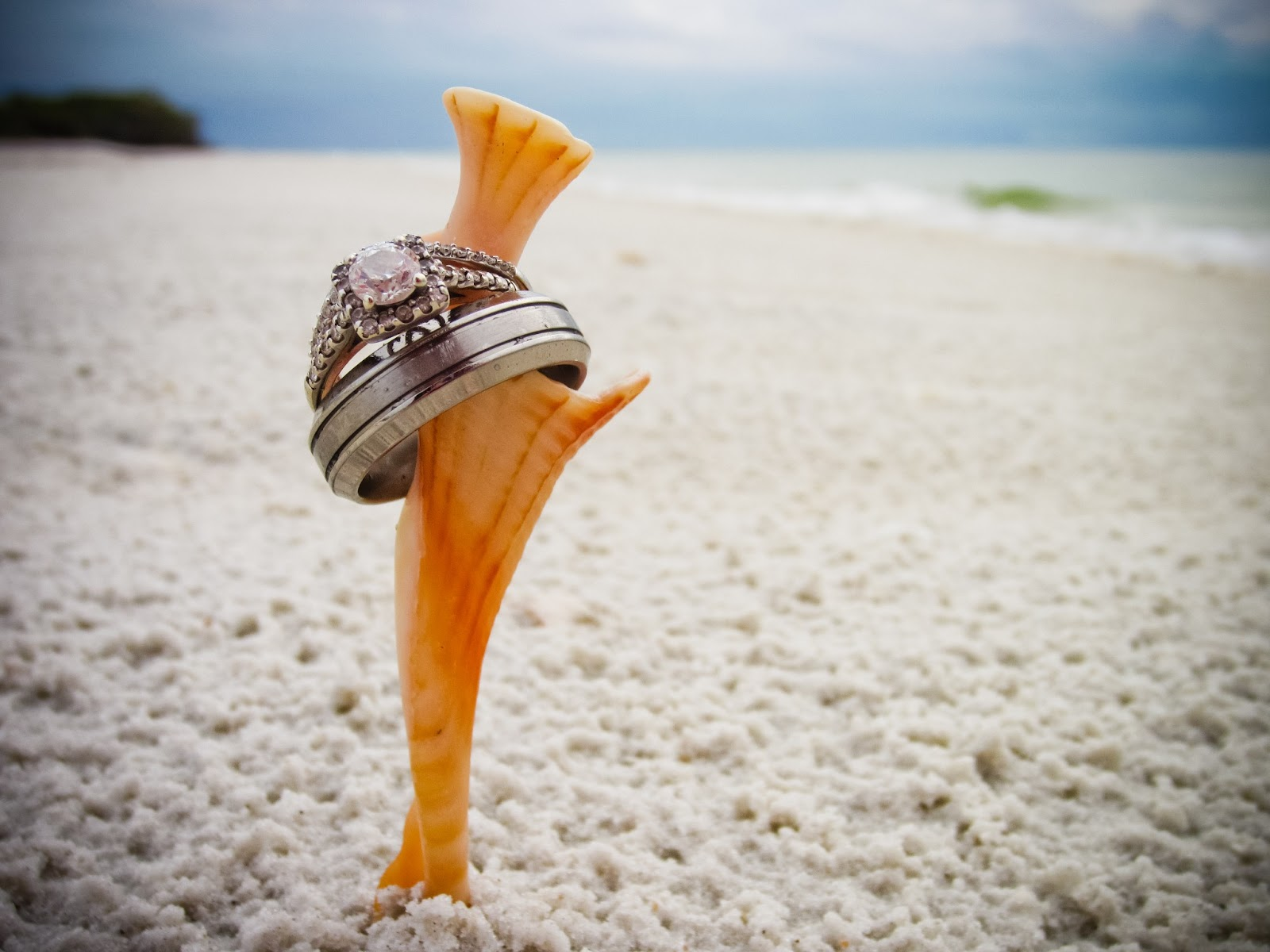 gold on photo in placed rings delicately a beach of the pair stock sand tropical wedding