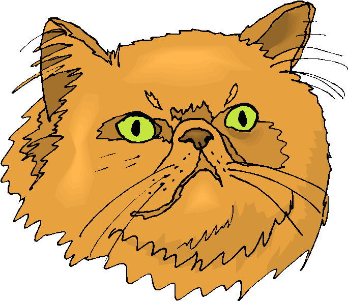 Yellow Persian Cat Free Clipart