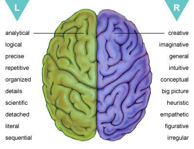 kemampuan otak kanan dan otak kiri