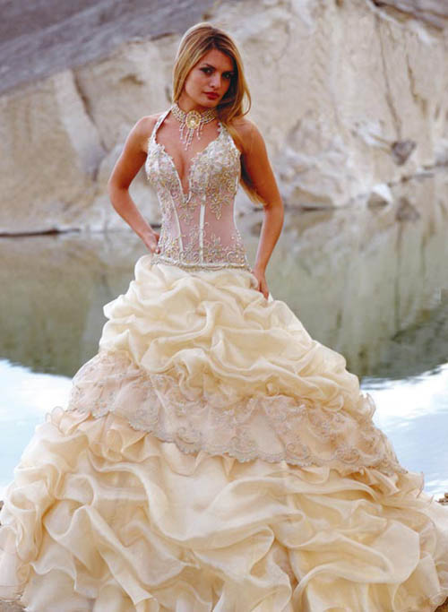 Wedding themes wedding style the corset wedding dress for Corset bra for wedding dress
