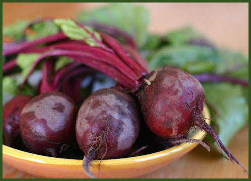 Antioxidant-Rich Foods to Boost Your Immune System