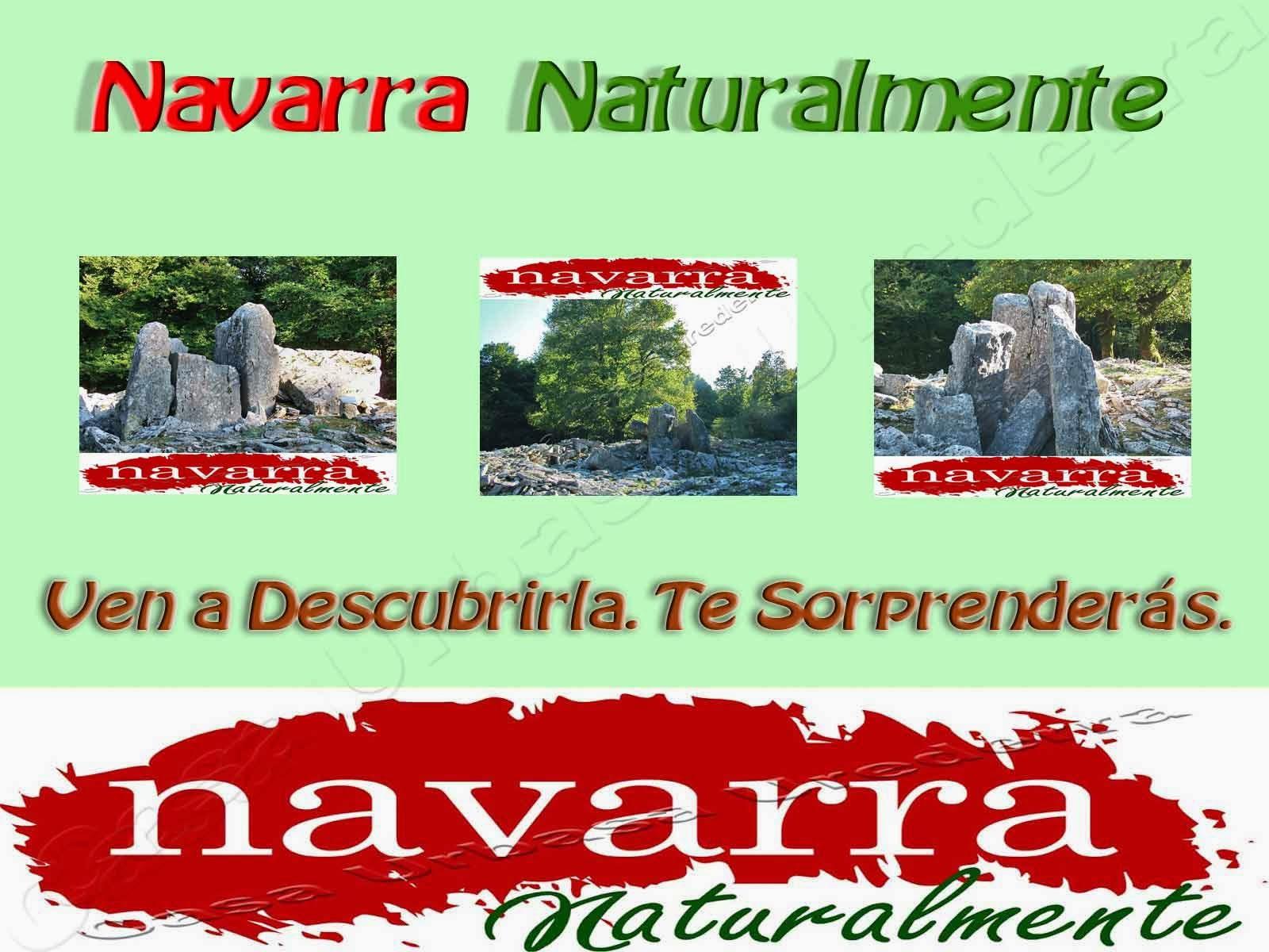 Navarra Naturalmente es un Destino Turístico que ofrece a sus visitantes muchas actividades para poder conocer, disfrutar y  satisfacer sus expectativas, turísticas, Naturalísticas y Gastronómicas.