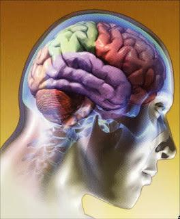 http://www.iqb.es/neurologia/a001.htm