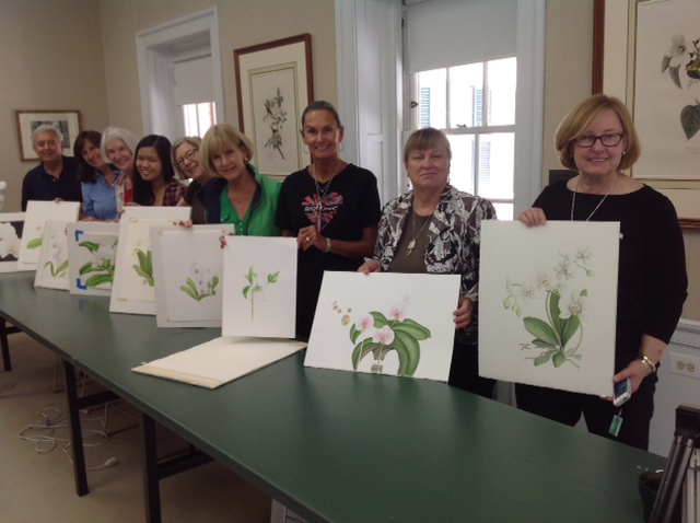 17 painting white flowers after the workshop all were very happy with their beautiful paintings at brushwood center ryerson woods everyone wondered how the white flowers mightylinksfo