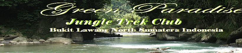 Green Paradise Bukit Lawang l Tour & Travel l Best Offer Adventure Club