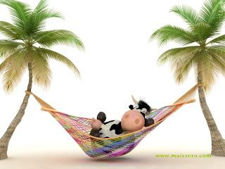 vaca na rede