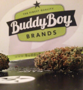Buddy Boy Brands Dispensary