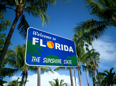Quotes About Florida Best Florida Automobile Insurance Quotes  Insurance Definition Tips