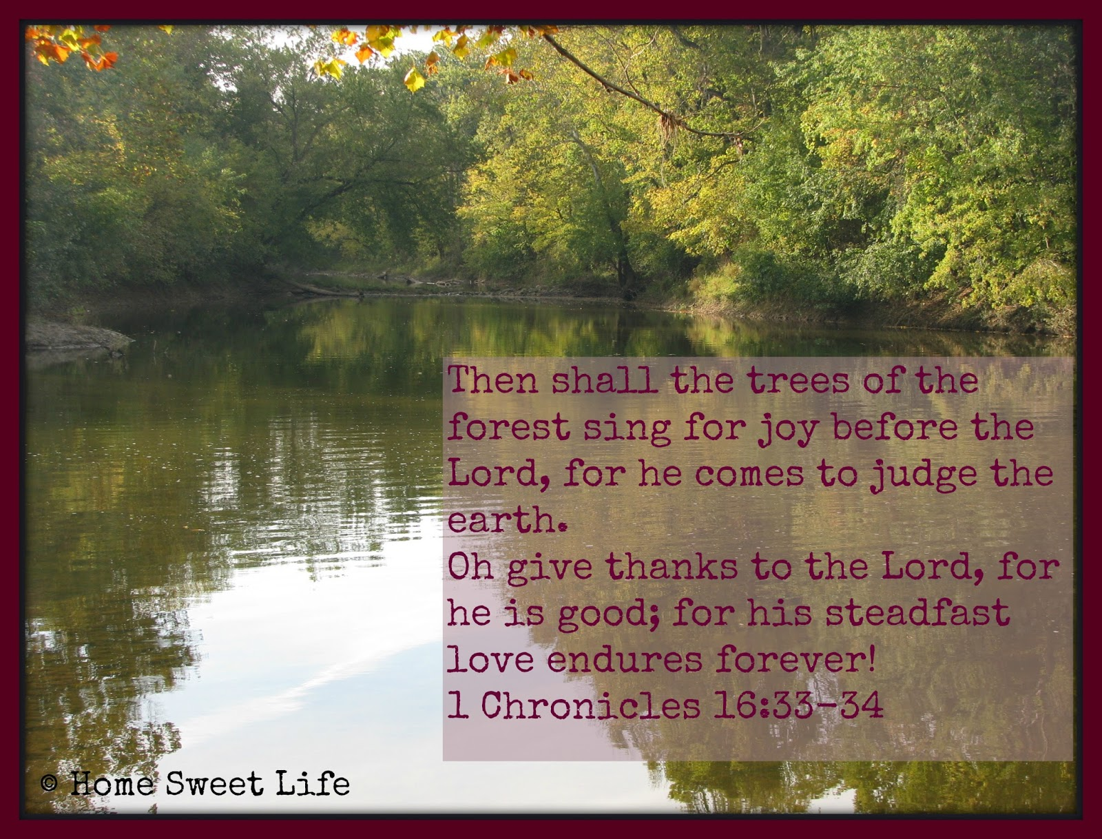 scripture, forest pictures, encouragement