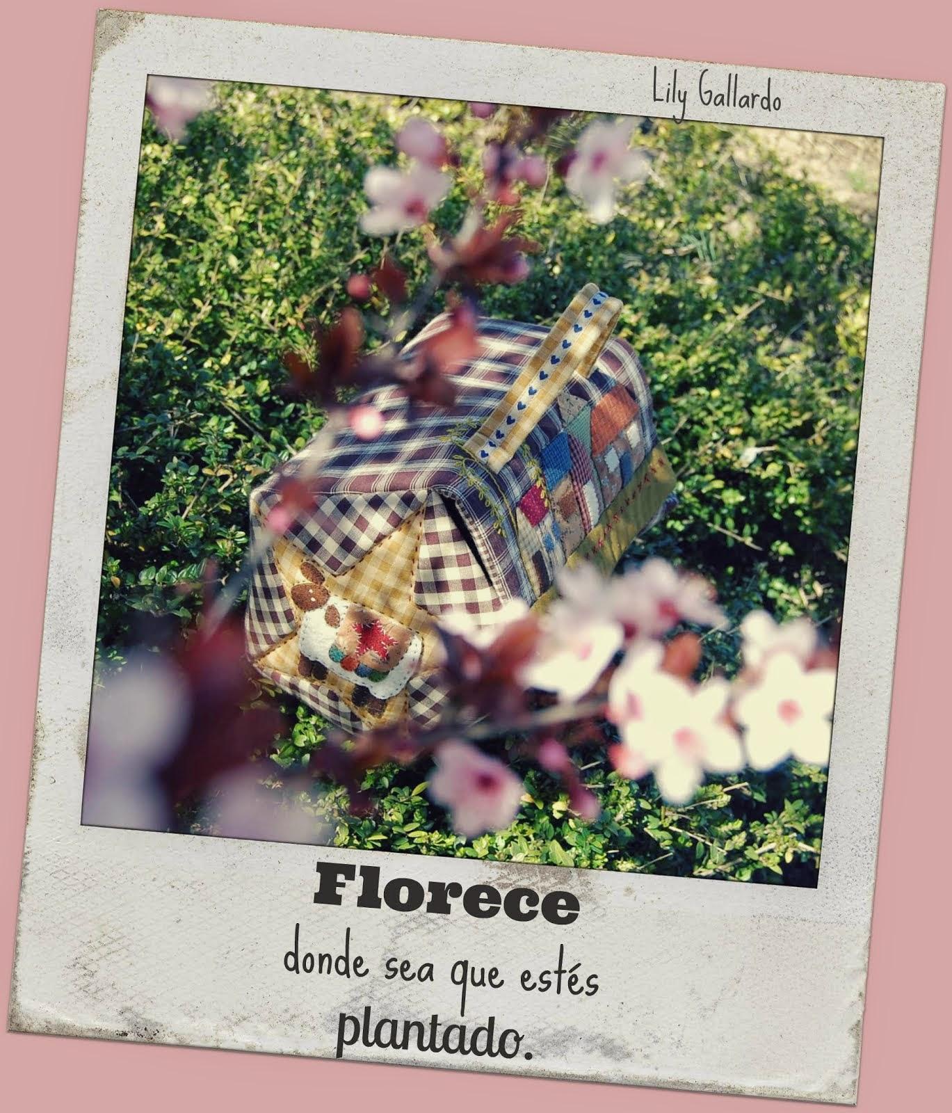 """""""Neceser FLORECE"""""""