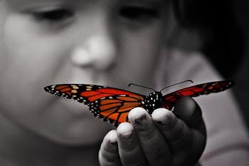 """""""Justo quando a lagarta achou que o mundo estava acabando...ela virou borboleta!"""""""