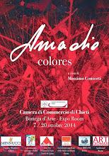 """Il film di """"Colores"""", la straordinaria mostra di Chieti"""