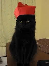 Cardinal Furretti