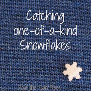http://howthesunrose-lalagirl.blogspot.com/2012/12/catching-snowflakes.html