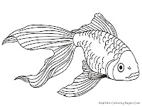 Gold Fish Kids Coloring Pages Realistic
