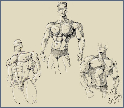 body builders sketch (drawing of men bodies)