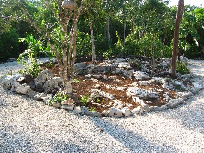 servicios jardinería - diseño jardines económicos ecológicos para casas