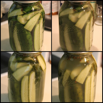 Homemade sour pickles in jar