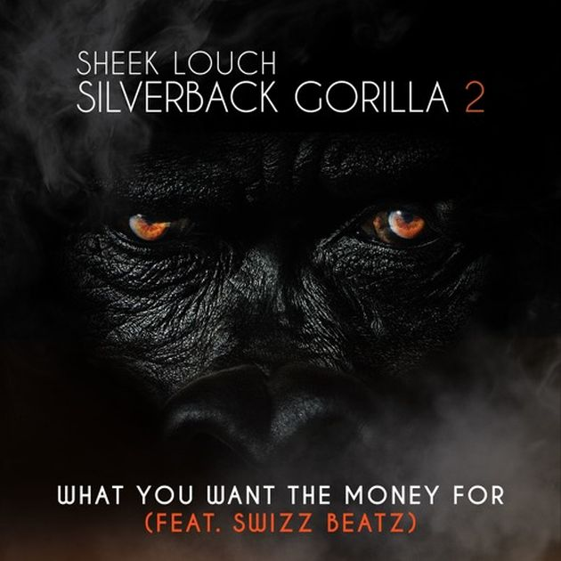 Sheek Louch - What You Want The Money For (Feat. Swizz Beatz)