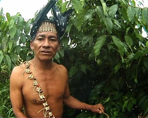Can amazonas naken matchless