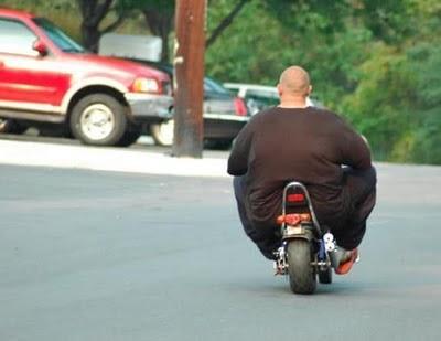 Funny Fat Rider