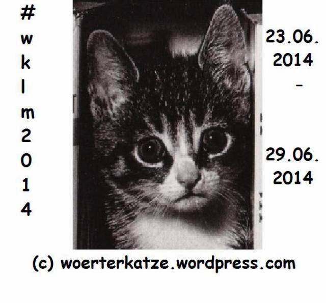 http://woerterkatze.wordpress.com/2014/06/25/wklm2014-tag-3-auf-in-eine-neue-runde/