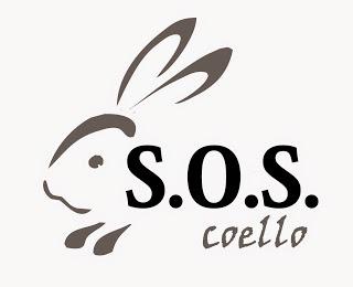 Salvem el conill