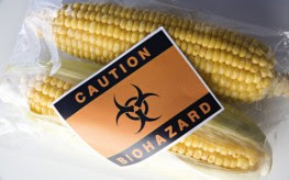 800 Scientists Demand Global GMO Experiment End
