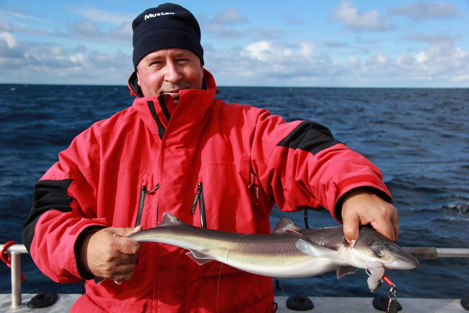 Рыбалка в августе в норвегии