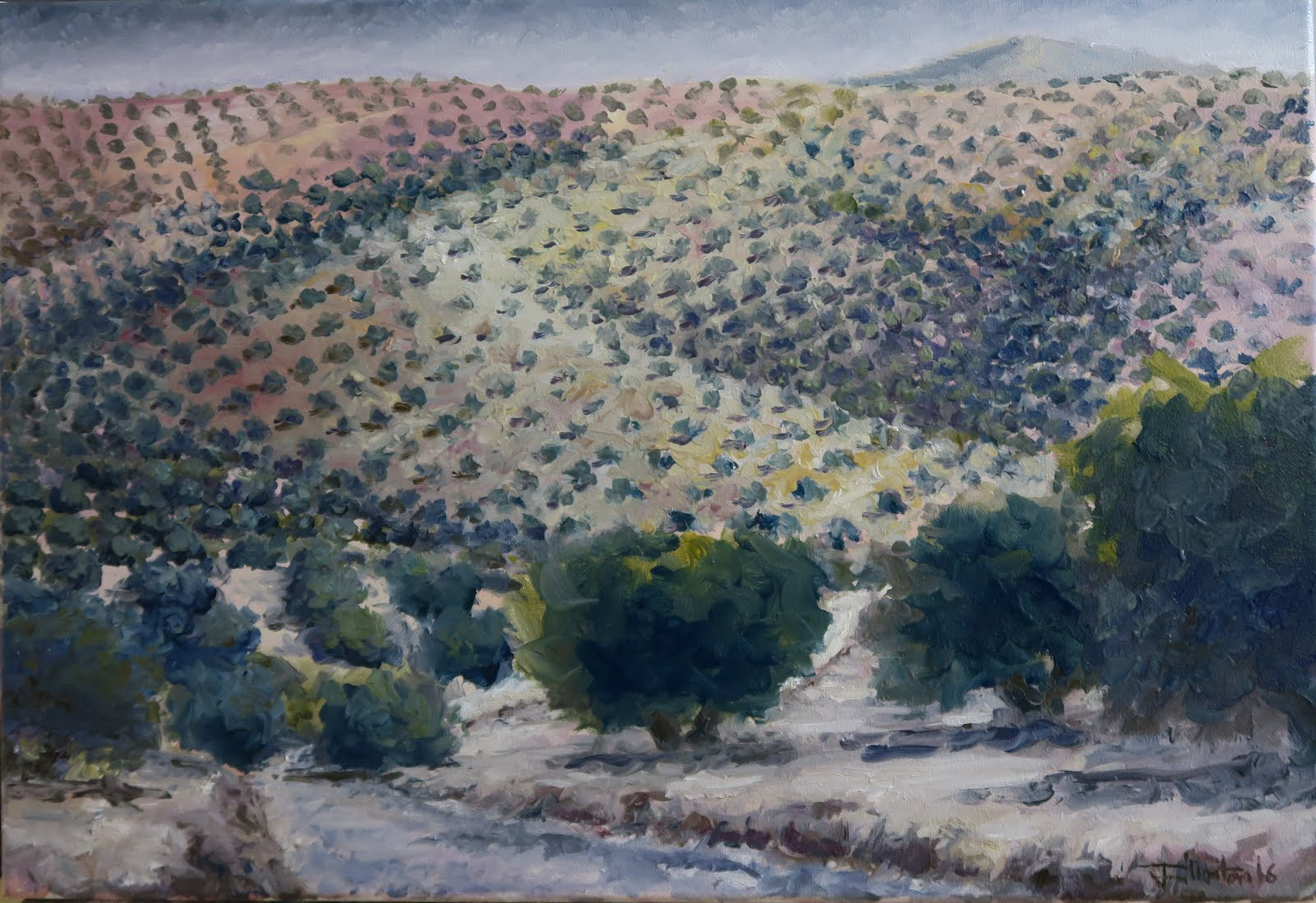 Las Norias; Fuerte del Rey, Jaén (10P)